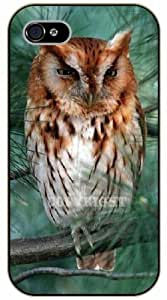LJF phone case iPhone 5 / 5s Brown owl - black plastic case / Animals and Nature, owl, owls