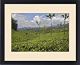 Framed Print of UNESCO, India, Tamil Nadu, Nilgiri Mountains, Heritage Steam Train