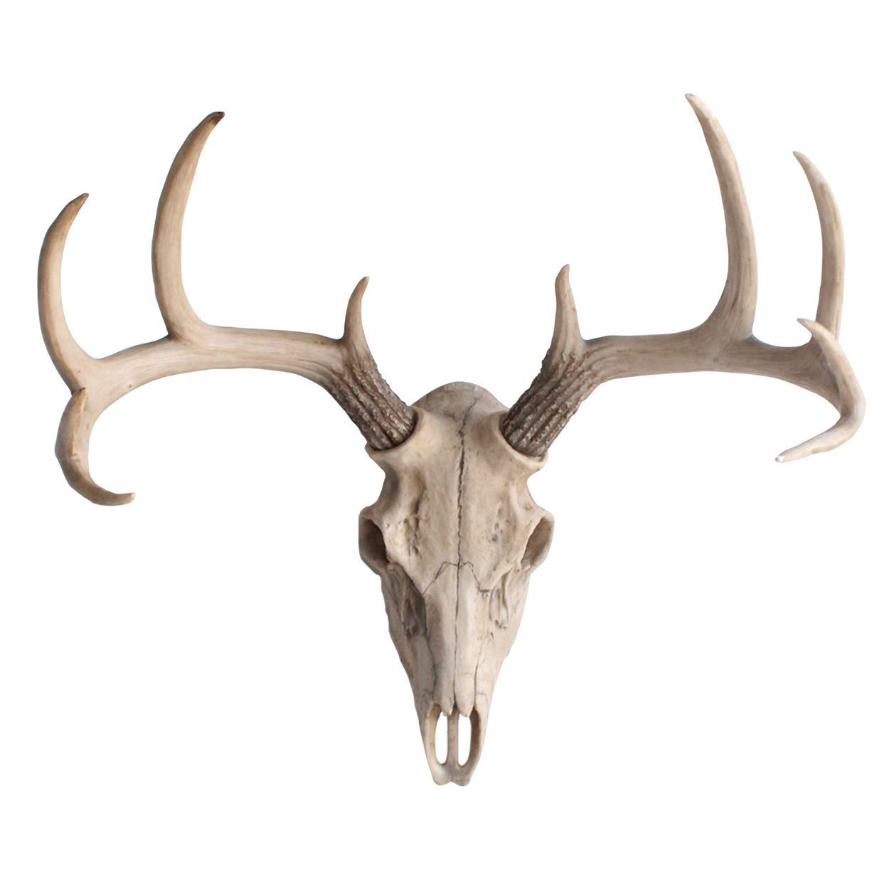 Wall Charmers Large Natural Faux Deer Skull - 21'' Faux Taxidermy Animal Head Wall Decor - Handmade Farmhouse Decor by Wall Charmers (Image #1)