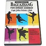 Nine Dragon Baguazhang Street Combat #1 DVD John Painter BAG01-D