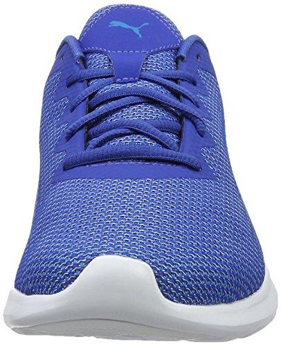 de Homme Blue 01 Danube Chaussures Mehrfarbig Vigor True Running Compétition Puma blue Bleu R4gwX