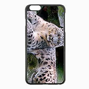 iPhone 6 Plus Black Hardshell Case 5.5inch - snow leopard big carnivore lay Desin Images Protector Back Cover