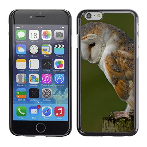 Premio Sottile Slim Cassa Custodia Case Cover Shell // F00032596 Fluffy owl // Apple iPhone 6 6S 6G PLUS 5.5""