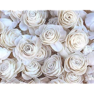 Sola Wood Flower 50 Pack New Beauty Mixed 13