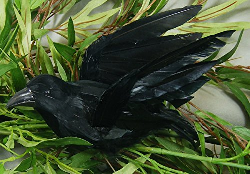 Artificial Black Feather Flying Crow with Attached Clip for Displaying, Crafting and Embellishing