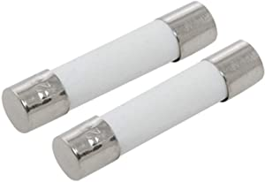 DealEnvy- Microwave Fuse Replacement for GE WB27X10388 (2 Pack)