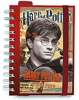Diario escolar Be You Harry Potter estándar 2019-2020 + ...