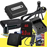 NPFH50 Lithium Ion Replacement Battery w/Charger + 8GB SDHC Memory Card + Mini HDMI + USB SD Memory Card Reader /Wallet + Deluxe Starter Kit for Sony DCRDVD508, DCRDVD408, DCRDVD308, DCRDVD108, DCRDVD505, DCRDVD405, DCRDVD305, DCRDVD205, DCRDVD105, DCRDVD