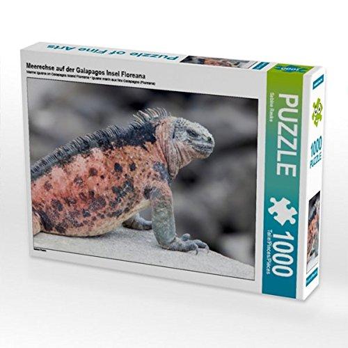 Meerechse auf der Galapagos Insel Floreana 1000 Teile Puzzle Puzzle Puzzle quer 2e6817
