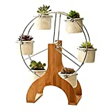 OUTFANDIA Ceramic Ferris Wheel Flower Design Pot Stand 6 Succulent Plant Pot Holder Garden Decor Planter