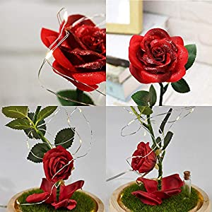 URBANSEASONS Beauty and The Beast Rose Enchanted Rose,Red Silk Rose and Led Light with Fallen Petals in Glass Dome on Wooden Base, for Valentine's Day Wedding Anniversary Mother's Day Birthday Party 7