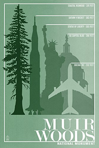 Muir Woods National Monument, California - Relative Sizes of the Redwood Tree (12x18 Art Print, Wall Decor Travel Poster)