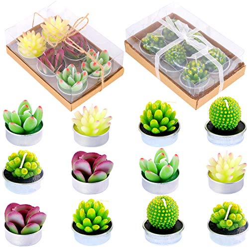 Glarks Cute Tea Lights Tealight Candles, Succulent Cactus for Birthday Party Valentine's Day Wedding Spa Home Decor and DIY Gift, 12Pcs a Pack ()