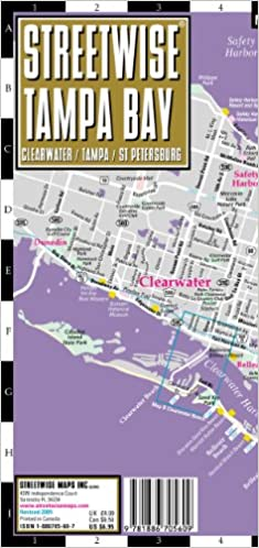 Streetwise Tampa Map - Laminated City Center Street Map of Tampa ...