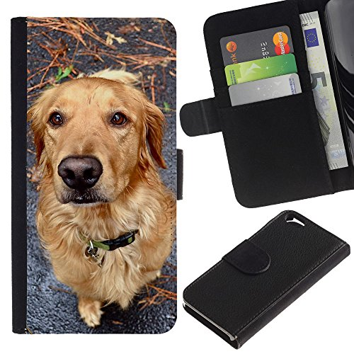 EuroCase - Apple Iphone 6 4.7 - golden retriever autumn fall dog canine - Cuir PU Coverture Shell Armure Coque Coq Cas Etui Housse Case Cover