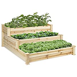 Best Choice Products 3-Tier Fir Wood Raised Garden Bed Planter Kit for Plants, Herbs, Vegetables, Outdoor Gardening w… 19 CUSTOMIZE EACH TIER: This 4x4ft garden bed has 3 tiers to keep sections divided and organized; separate vegetables, herbs, flowers, and other plants STAIR-STEP DESIGN: Designed with 3 different depths: 22in, 15in, and 8in - making it perfect for growing plants and vegetables with root lengths from short to medium and long DIFFERENT ARRANGEMENTS: Stack the planter up tall for a 3-tier design, or lay each section out in a flat line for 3 planting areas of different sizes
