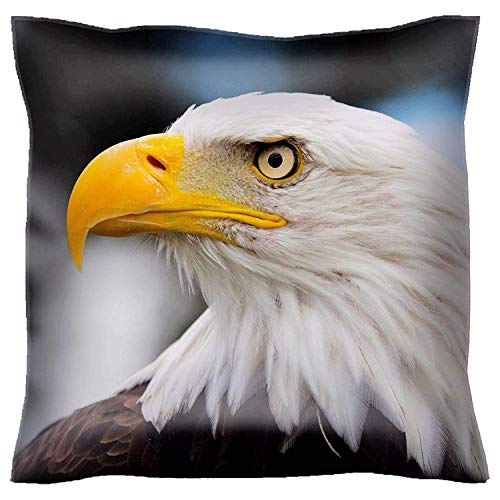 HFYZT Throw Pillow Case 18x18 Inch Bald Headed Eagle Close up Shot with Blurred Background Throw Pillow Cushion Cover