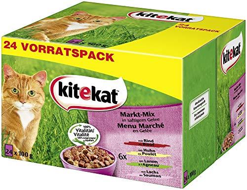 Kitekat Katzenfutter – Nassfutter im praktischen 48 x 100g-Portionsbeutel – verschiedene Sorten