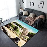 Vanfan Design Home Decorative A wild cheetah about to attack hunt sitting on a dead tree Safari in Serengeti Tanzania Africa Modern Non-Slip Doormats Carpet for Living Dining Room Bedroom