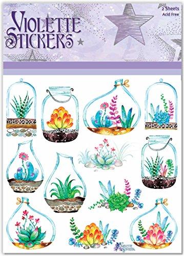 Violette Stickers Succulant Planters