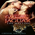 Turned by a Wealthy Jaguar: The Meeting, Book 1 | Crystal Sheppard