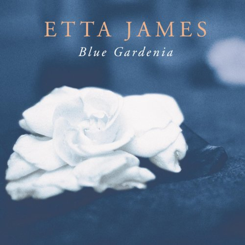 Amazon Love Letters Etta James MP3 Downloads