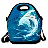 IMISS Dolphin Kids Insulated School Travel Outdoor Cooler Box Lunchbox Container Case