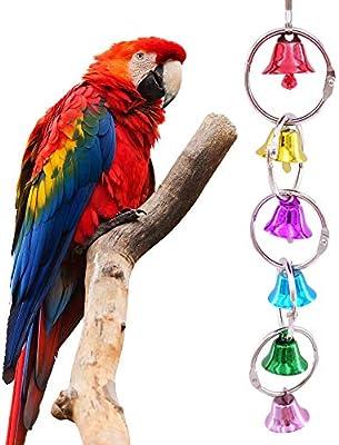 Waniba Mujeres Colorido pájaro pájaro Metal Anillo Campana Loro ...