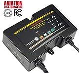 BatteryMINDer 128CEC1-AA-S5: 12 Volt-8 Amp Concorde