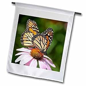 3dRose fl_98378_1 2 Monarch Butterflies on Cone Flower Garden Flag, 12 by 18-Inch