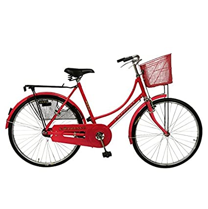 54f2b61df82 Buy Hero Cycles Girlz Zone Empress Bicycle Online at Low Prices in India -  Amazon.in