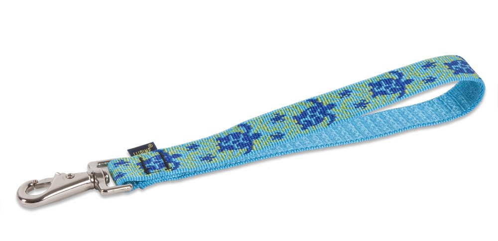 LupinePet Originals 1'' Turtle Reef 11'' Training Tab/Leash for Medium and Larger Dogs