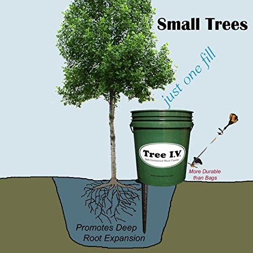 Irrigation System Trees - 6