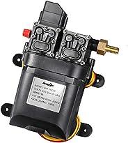 bayite 12V DC Fresh Water Pump 7.5 L/Min 2 GPM 100 PSI Adjustable 12 Volt Diaphragm Pump Self Priming Sprayer