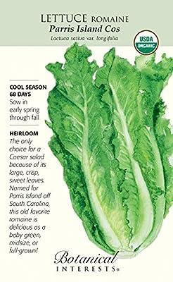 Organic Parris Island Romaine Lettuce Seeds - 4 grams