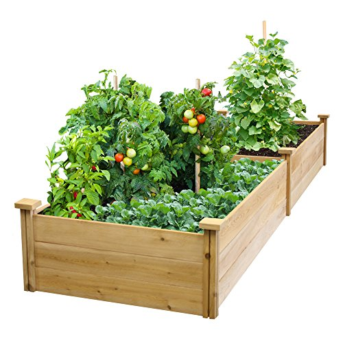 Best Value Cedar Raised Garden Bed Planter 24'' W x 96'' L x 10.5'' H by Greenes Fence