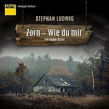 Zorn: Wie du mir Hörbuch von Stephan Ludwig Gesprochen von: David Nathan