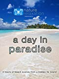 A Day in Paradise: 4 Hours of Beach Scenes from a Hidden Fiji Island