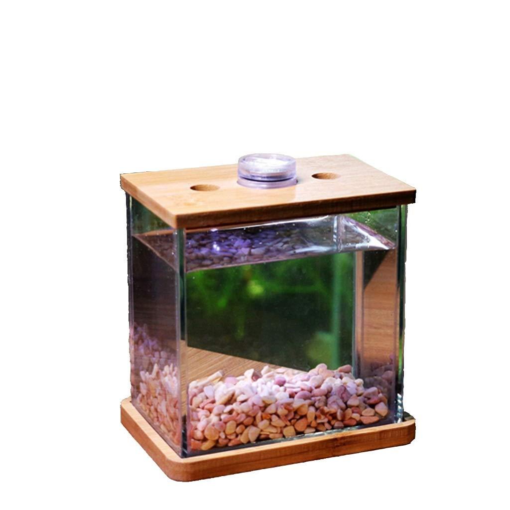 Amazon.com: Personality Creative Glass Fish Tank Aquarium ...