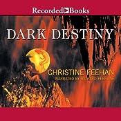 Dark Destiny: Dark Series, Book 13 | Christine Feehan