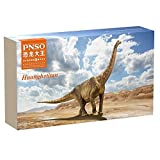 PNSO dinosaur Great knowledge versions huanghetitan dinosaur figures animal huge length 70CM specimen, figure that pursues real and reducing the degree of challenge to the stuffed