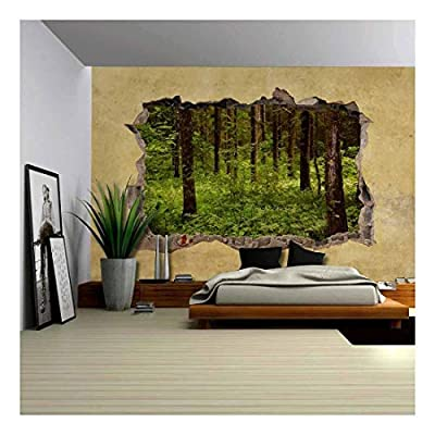 Made With Love, Incredible Composition, Trees in The Forest Viewed Through a Broken Wall Large Wall Mural Removable Peel and Stick Wallpaper