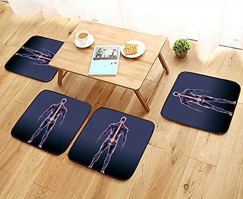 UHOO2018 Modern Chair Cushions d of Spinal Cord a Part of Human Skeleton Anatomy Convenient Safety and Hygiene W23.5 x L23.5/4PCS -