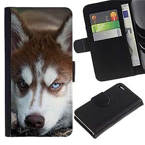 Alaskan Malamute Siberian Husky Dog - la tarjeta de Crédito Slots PU Funda de cuero Monedero caso cubierta de piel Apple Apple iPhone 4 / iPhone 4S