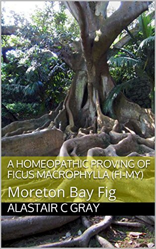 - A Homeopathic Proving of Ficus Macrophylla (Fi-my): Moreton Bay Fig (Experience of Medicine |  Hahnemannian Provings Book 1)