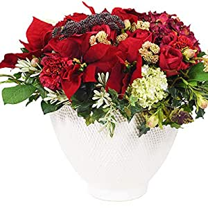 Little Green House Red Christmas Bouquet with Indoor Flowers Vase, Red