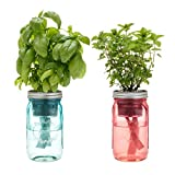 Indoor Herb Garden Starter Kit - Cocktail Inspired - Mint and Basil - 2 Self-Watering Herb Kits
