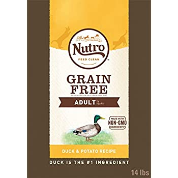 Nutro Grain-Free Adult Dry Cat Food Duck 14 Lb. Bag