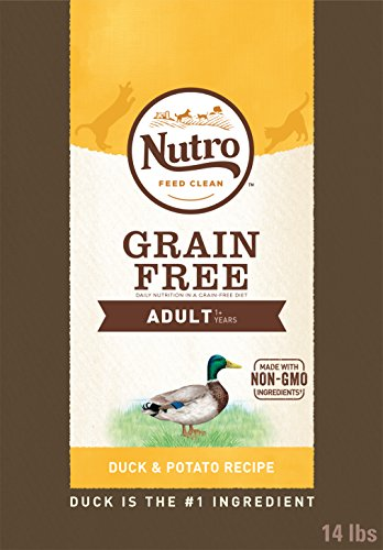 NUTRO GRAIN-FREE Adult Natural Dry Cat Food Duck & Potato Recipe 14 lb Bag ()