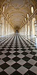 GladsBuy Grandiose Palace 10\' x 20\' Computer Printed Photography Backdrop Indoor Theme Background LMG-085